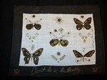Set of 6 George Briard Cocktail Napkins with Butterflies
